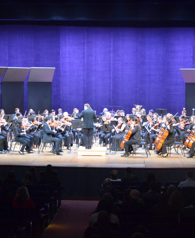 Classical orchestra on a stage