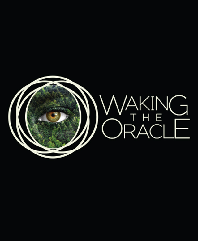 Waking the Oracle: A Project of Firerock