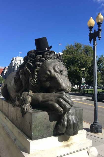 lion with hat